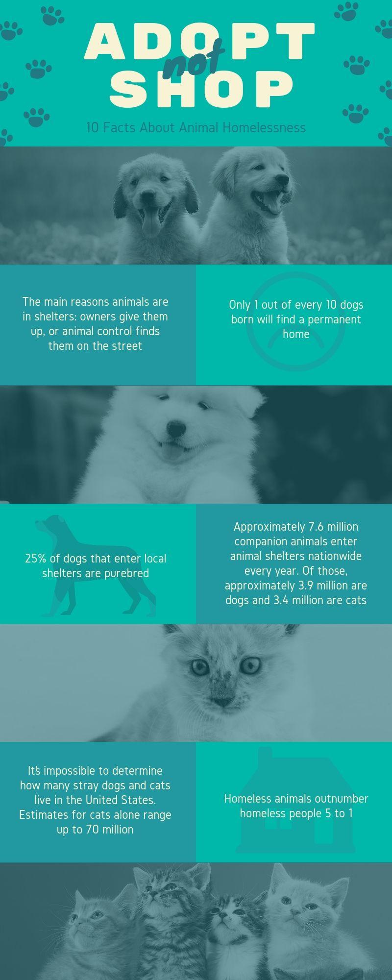 Infographic 012