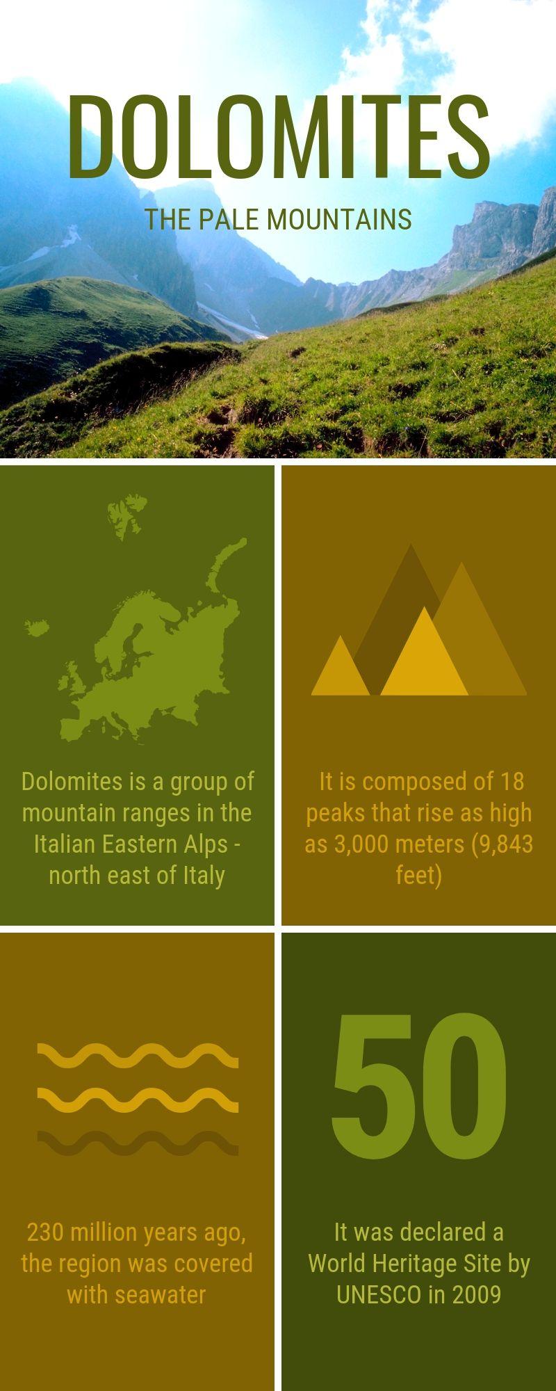 Infographic 021